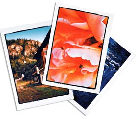 Custom Greeting Card Printing For Business Or Family